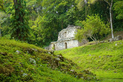 Yaxchilan Royalty Free Stock Photos
