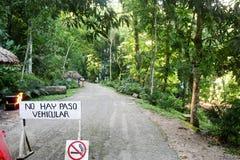 Yaxchilan forest - Mexico Stock Photo