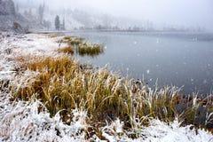 Yazevoe sjö i Altai berg, Kasakhstan Arkivfoton