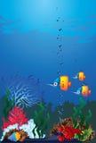 życia morze Obrazy Royalty Free