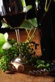 życia wino czerwony spokojny Obrazy Stock