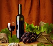 życia wino czerwony spokojny Zdjęcia Stock