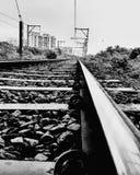 Życie linia Obrazy Stock
