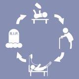 Życie Ludzkie cyklu procesu sceny rozwoju kija postaci piktograma ikona dla projekt prezentaci, wewnątrz Zdjęcia Stock
