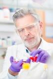 Życie naukowiec bada w laboratorium. Zdjęcia Royalty Free