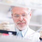 Życie naukowiec bada w laboratorium. Zdjęcie Stock