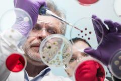 Życie naukowowie bada w opieki zdrowotnej laboratorium Obrazy Royalty Free