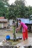 Życie oryginalna Tan rodzina w chitwan, Nepal Zdjęcie Royalty Free