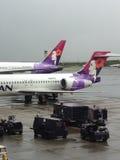 Życie podczas lota od Hawaii stały ląd Seattle usa Fotografia Stock