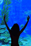 życie woda Obrazy Royalty Free