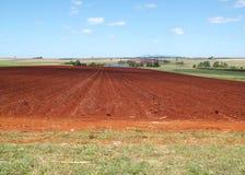 życie z gospodarstw rolnych Obrazy Stock