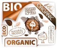 życiorys eco elementów organicznie set Zdjęcie Royalty Free