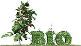 Życiorys - słowo od bluszcz rośliny Obraz Stock