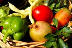 Życiorys warzywa Obrazy Royalty Free