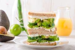 Życiorys zdrowa kanapka Obraz Stock