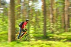 ?yclist, die door het hout rent Stock Foto