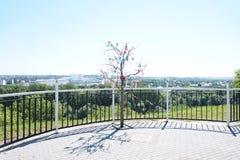 Życzenia drzewo Fotografia Stock