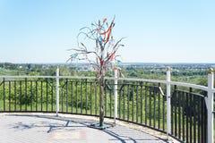 Życzenia drzewo Zdjęcia Royalty Free