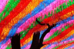 Życzenia na drzewie Zdjęcie Royalty Free