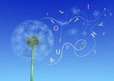 Życzenia od dandelion w słowach ilustracja wektor