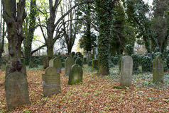 Żydowski cmentarz Zdjęcie Stock