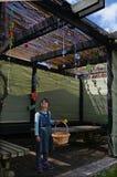 Żydowski dziecko dekoruje rodzinnego Sukkah Fotografia Royalty Free