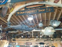 Ye Olde Curiosity Shop sign with Fiji mermaid and many other objects. Ye Olde Curiosity Shop sign with Fiji mermaid, whale rib, preserved fish, weapons in the stock photography