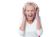 Yeah! That's wonderful and loud song. Stock Images