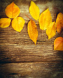 Yeallow leaves on rustic wooden background - autumn decoration Stock Images