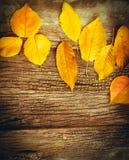 Yeallow part sur le fond en bois rustique - décoration d'automne Images stock