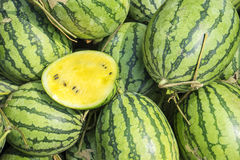 Yeallow Watermelon Stock Images
