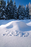 Year 2012 written in Snow. In Winter Forest Stock Photo