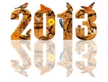Year 2013. 2013 number with white background, digits made of terrain with cracks. Each number also decorated with animals and flowers stock illustration