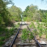 A year ago on the tracks. Year ago tracks railroad traintracks royalty free stock photos