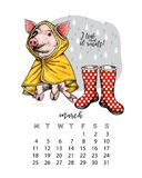 Year calendar with pig. Monthly illustrations. Hand drawn piglet wears raincoat and gumboots. March, rainy spring. Vector poster, cute flyer, wall banner stock illustration