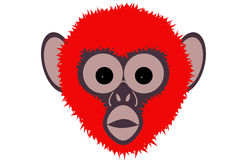 Year, fier monkey 2016. Year fier monkey 2016 red Stock Photos