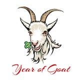 Year of goat Stock Image