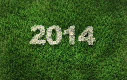 2014 year. 2014 on the green grass Stock Illustration