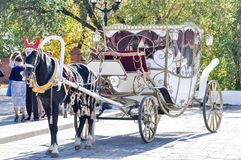 2014 year of the horse, the horse of wedding. City of Orenburg, Southern Ural, Russia Stock Photos