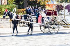 2014 year of the horse, the horse of wedding. City of Orenburg, Southern Ural, Russia Royalty Free Stock Photography