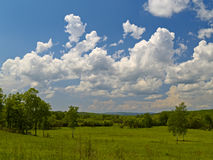 Year landscape with meadow and cloudy sky Royalty Free Stock Images
