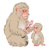 Year of the Monkey Clip Art -Mother and Child Royalty Free Stock Photo