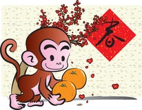 Year of monkey Royalty Free Stock Images