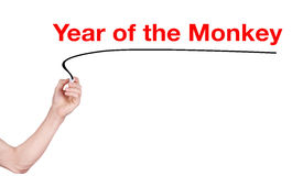 Year of the monkey word Stock Photo