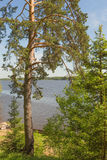 Year-old beautiful view of the Volga River royalty free stock photos