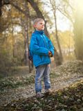 A 7-year-old boy is lit by the setting sun in an autumn park stock image