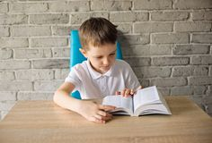 6 year old boy in a white polo shirt reading a book Stock Photo
