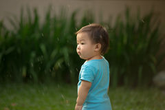 1 year old Chinese Asian boy wearing rompers in a garden Royalty Free Stock Photo
