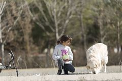 10 year old girl giving food to her dog outdoors. Horizontal shot with natural light Stock Images