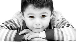 6 year old happy boy with striking, colored eyes leaning forward with white background Royalty Free Stock Image